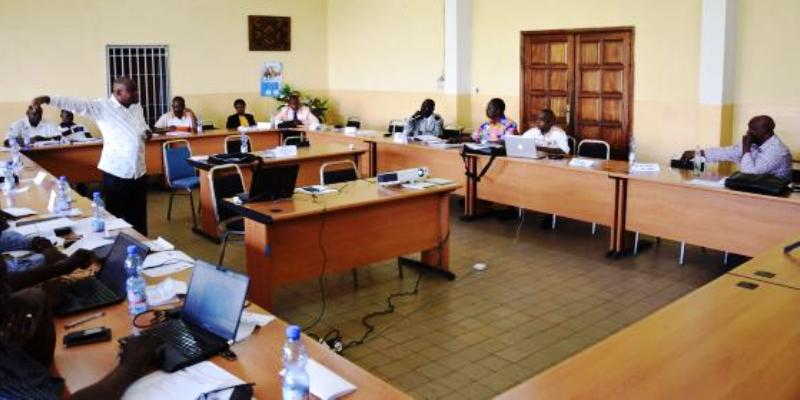 WORKSHOP REPORT on the organization of a scientific journal held at the Kinshasa school of Medicine in October 2016 by Annales Africaines de Médecine (African Annals of Medicine)